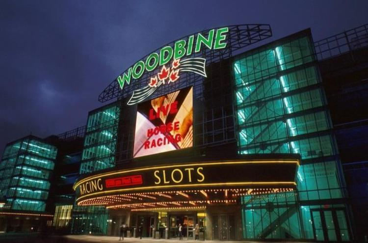 Woodbine photo